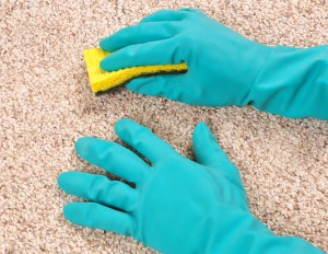 Brooklyn, NY Carpet Cleaning - Benefits Of Hiring A Carpet Cleaning Professional