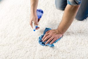 Brooklyn, NY Professional Carpet Cleaning